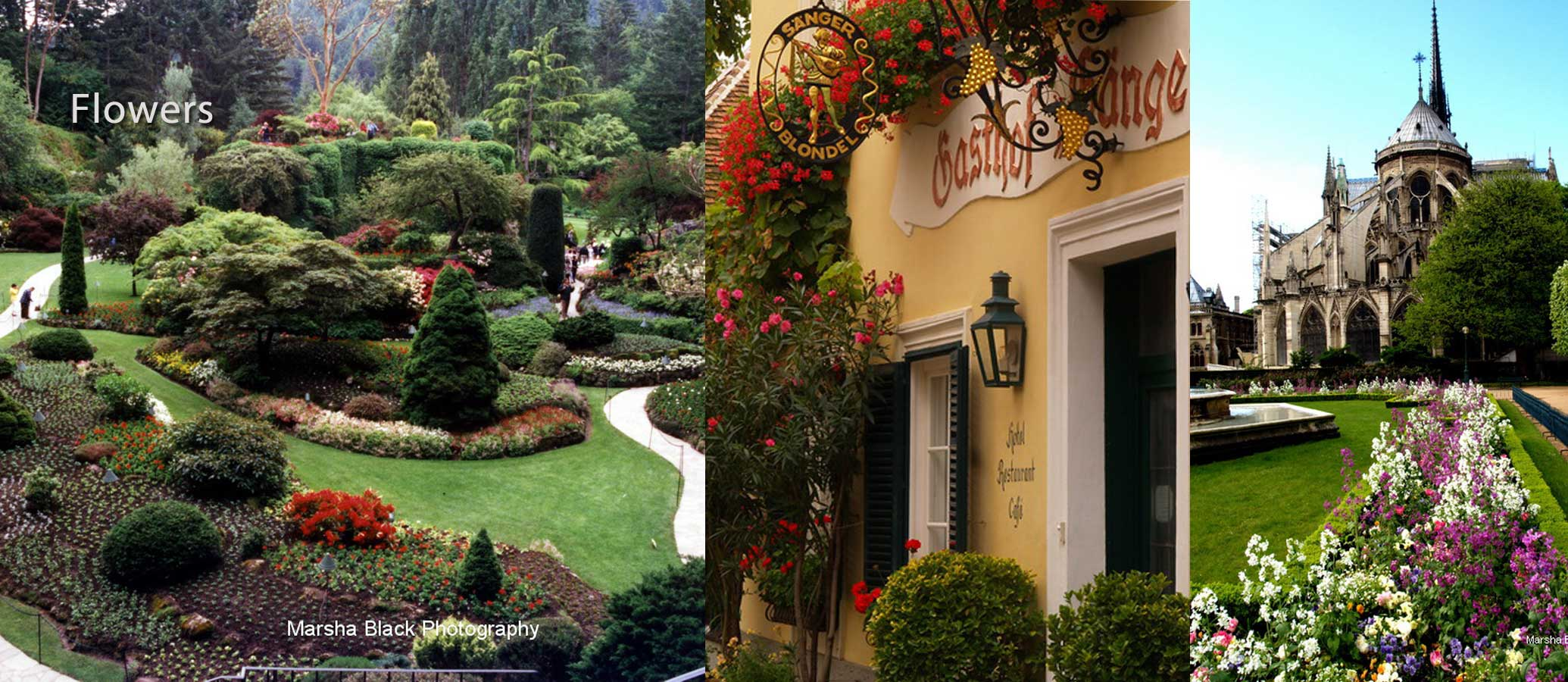 Photo Collage: (l to r): Butchart Gardens, Victoria B.C.; climbing red flowers decorating the entrance to an Austrian B &B, Paris Notre Dame gardens
