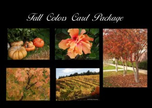 New! Fall Colors Card Package