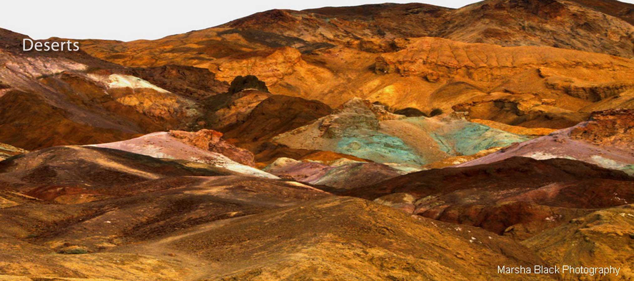 Deserts-Artists-Palette-Marsha-J-Black-900