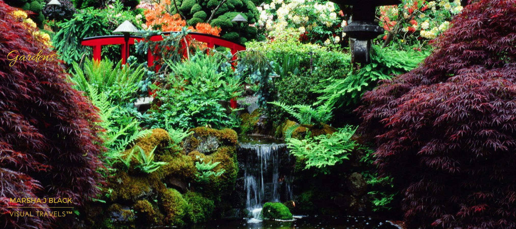 Japanese Garden at Butchart Gardens, Vancouver Island, BC by Marsha J Black | Visual Travels™ Photography
