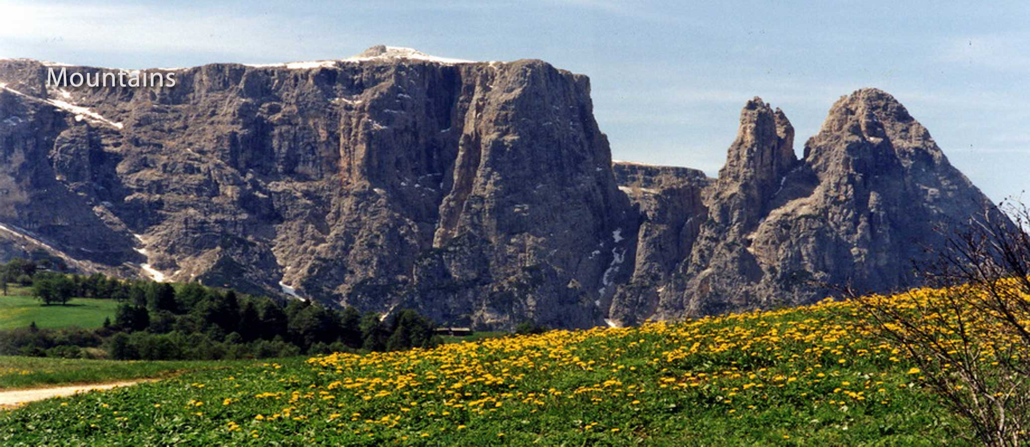 Mountains-Dolomites-Alip-di-Suisse-Mt.-Schlern-Marsha-J-Black-900